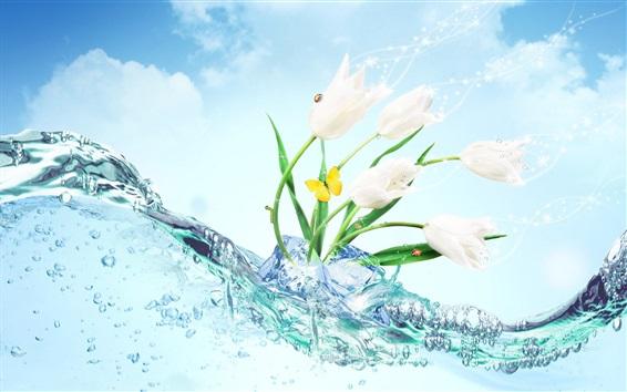 Fond d'écran tulipes blanches fleurs, glace, eau, papillon, conception créative
