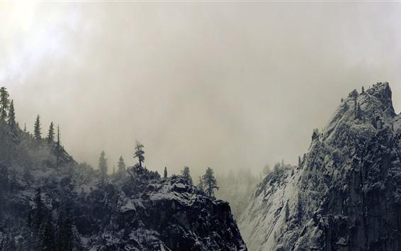 Fond d'écran Yosemite Valley, Californie, États-Unis, l'hiver, le brouillard