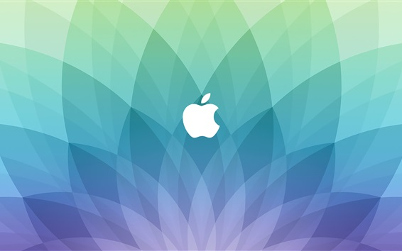 Wallpaper Apple logo, blue sector shaped background