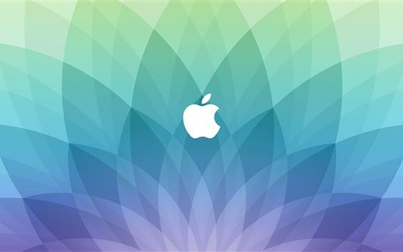 Fondos de pantalla logotipo de la manzana, azul de fondo en forma de sector