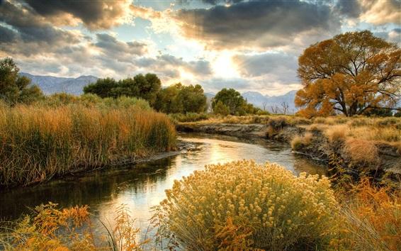 Fond d'écran paysages d'automne, nature, jaune herbe, rivière, arbres, nuages