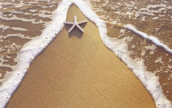 Обои Пляж, песок, морская звезда, вода, волны