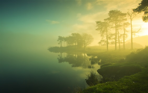Wallpaper Beautiful dawn scenery, trees, lake, mist, sunrise, blurry