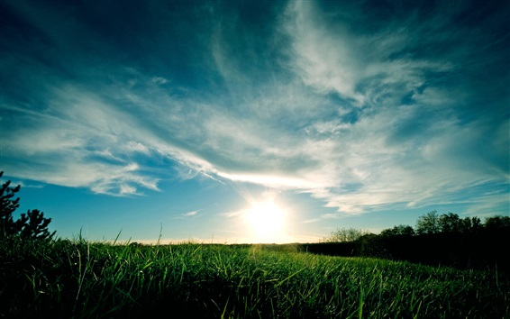Fond d'écran Bleu ciel, nuages, herbe, coucher de soleil