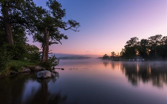 Wallpaper Calm lake, fog, rocks, trees, morning
