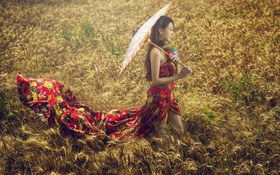 Fond d'écran Colorful robe fille asiatique dans l'herbe