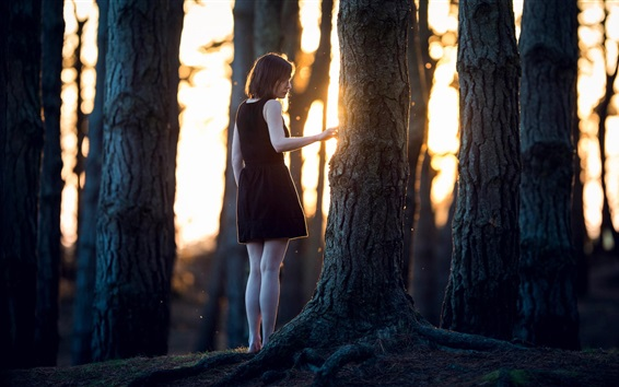 Wallpaper Forest, lonely girl, trees, sun rays