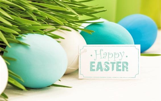 Fondos de pantalla Felices de Pascua, huevos, azul, blanco, hierba