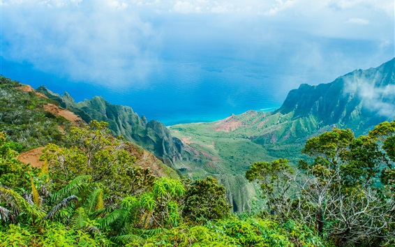 Wallpaper Hawaii beautiful nature landscape, blue sea, mountains, trees