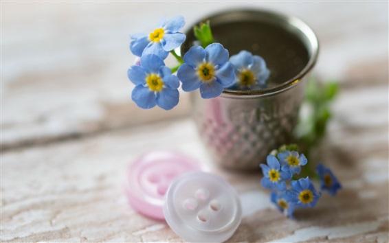 Fond d'écran Petites fleurs bleues, boutons, tasse