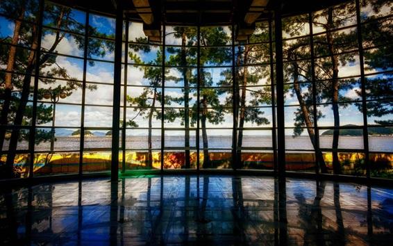 Wallpaper Museum, Yeosu, South Korea, trees, window