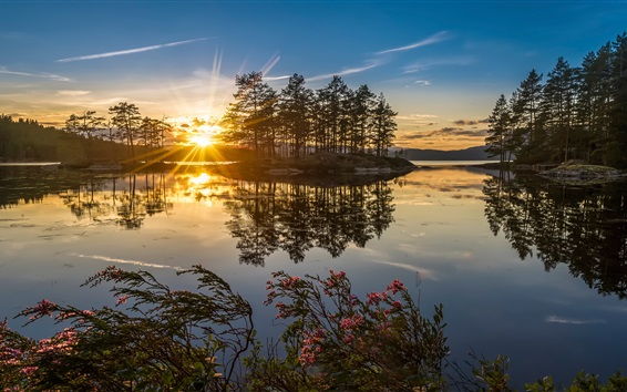 Wallpaper Norway nature sunset, lake, trees, sun rays