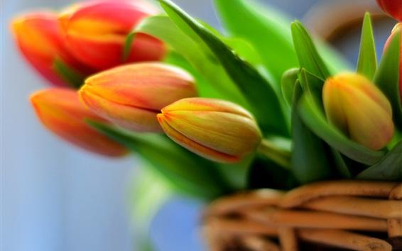 Fondos de pantalla tulipanes naranjas, ramo de flores en la cesta
