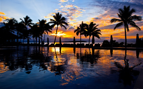Wallpaper Palm trees, pool, water, sea, resort, sunset, evening