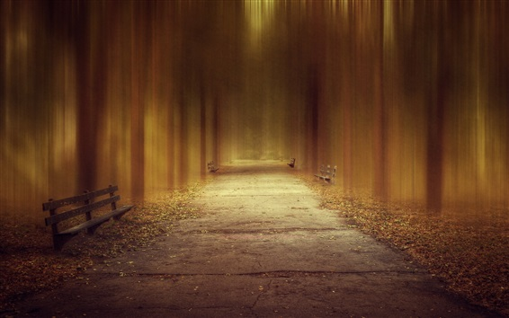 Wallpaper Park, road, bench, trees, design