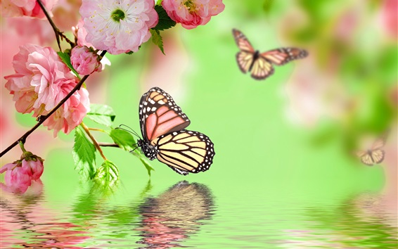 Wallpaper Pink flowers blossom, spring, butterfly, water reflection