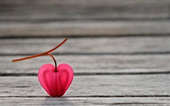 Papéis de Parede flor lanterna rosa, placa de madeira