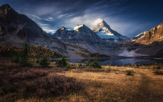 Wallpaper Snowy peak, mountains, lake, grass, autumn, Columbia, Canada