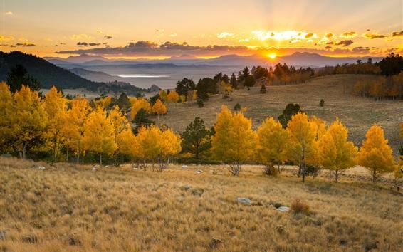 Fond d'écran Coucher de soleil ciel, arbres, montagnes, herbe, nuages, les rayons du soleil