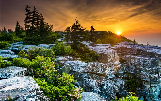 Wallpaper USA, West Virginia, beautiful sunset, rocks, trees, red sky