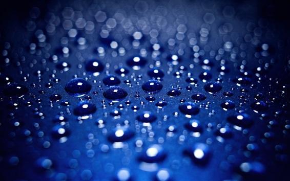Fondos de pantalla Las gotas de agua, rocío, fondo azul