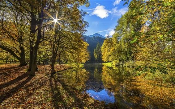 Wallpaper Autumn landscape, trees, river, sunshine