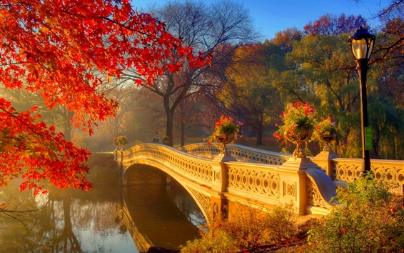 Wallpaper Autumn park at morning, river, bridge, trees, flowers