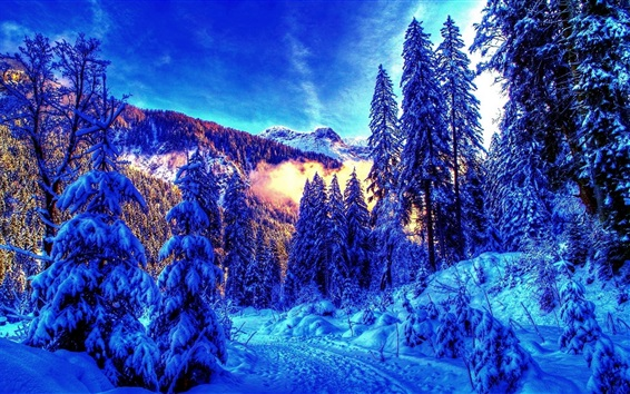 Wallpaper Beautiful winter, thick snow, mountain, trees, fog