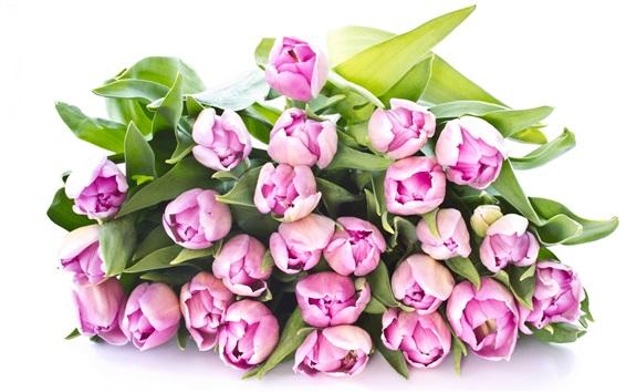 Обои Букет фиолетовые цветы, листья, на белом фоне