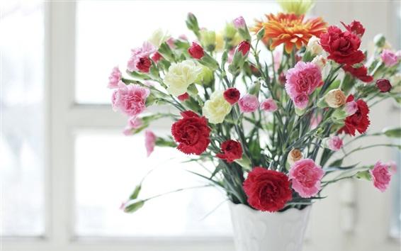 Fondos de pantalla Claveles, rosa, rojo, blanco, flores, florero