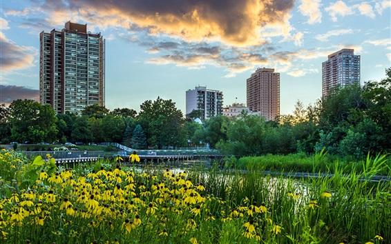 Обои Город, небоскребы, цветы, деревья, Lincoln Park, Чикаго, Иллинойс, США