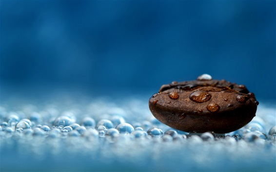Wallpaper Coffee bean, water drops