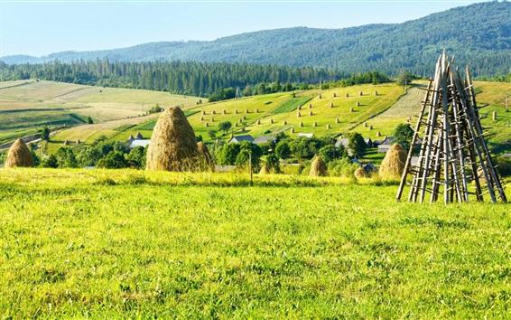 Wallpaper Farm field, hay, trees, mountains, houses, Ukraine, Carpathians