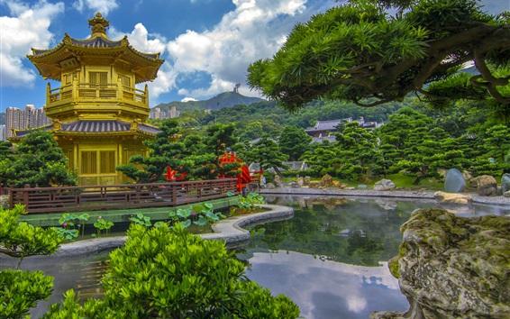 배경 화면 홍콩, 중국, 탑, 연못, 나무, 공원