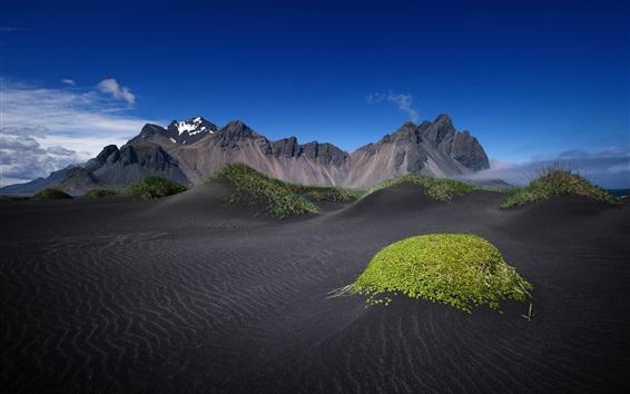 壁紙 アイスランド、黒い砂、山、空、草