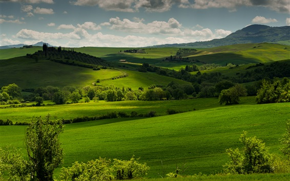 Wallpaper Italy, Tuscany, green fields, trees, clouds, dusk