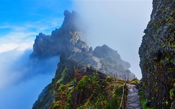 Wallpaper Madeira Trails, mountains, path, clouds