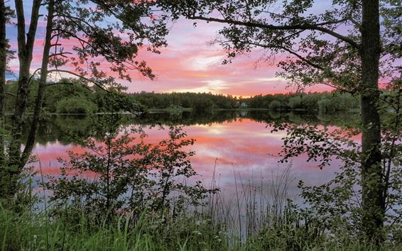 Fond d'écran Matin nature paysage, lac, réflexion de l'eau, les arbres, Nacka, Suède