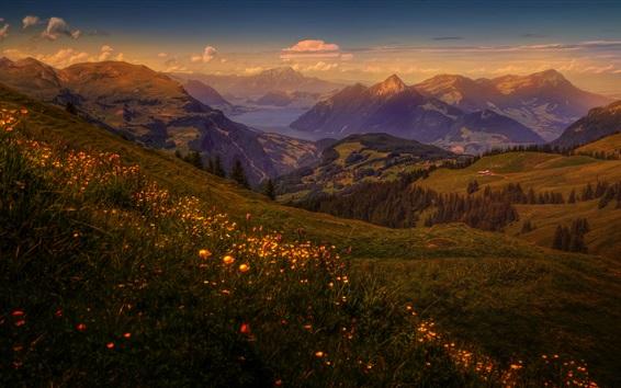 배경 화면 산, 잔디, 하늘, 황혼, 구름
