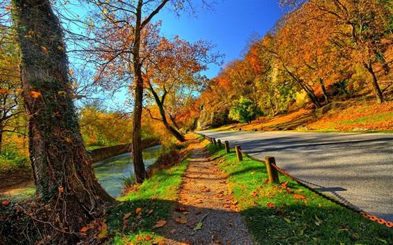 Обои Парк, деревья, дорога, осень, солнце