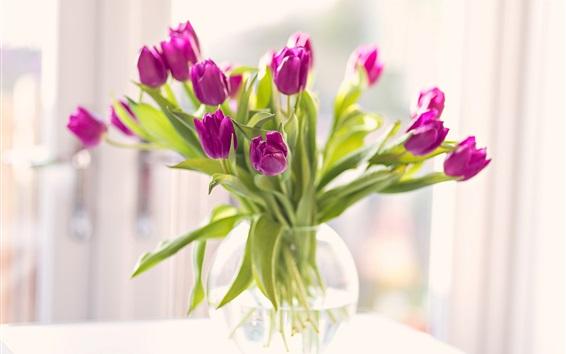 Обои Фиолетовый тюльпаны, букет, ваза