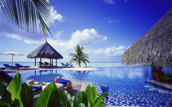 Wallpaper Resort, sea, palm trees, pool