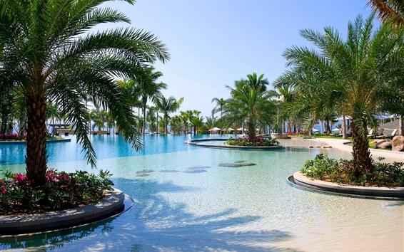 Fond d'écran Sanya, station, piscine, palmiers, mer, Chine