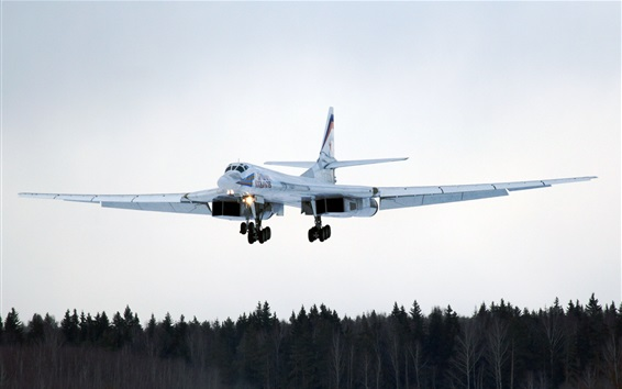 Wallpaper Tu-160 long-range bombers