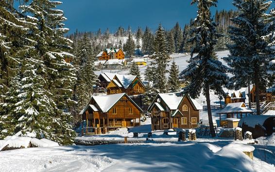 壁紙 ウクライナ、雪、冬、村、木、家
