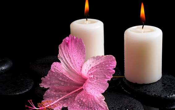 Wallpaper White candles, fire light, hibiscus flower, water drops