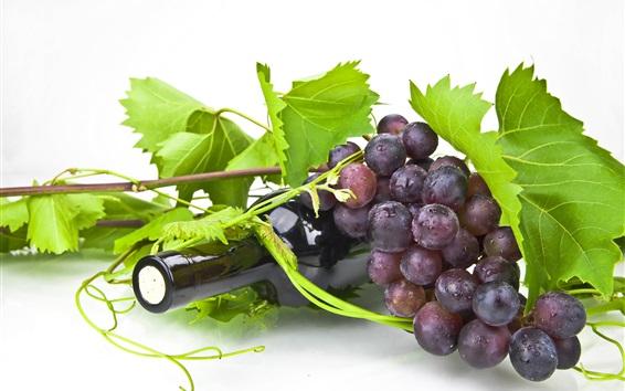 Wallpaper Wine, bottle, grapes, green leaves