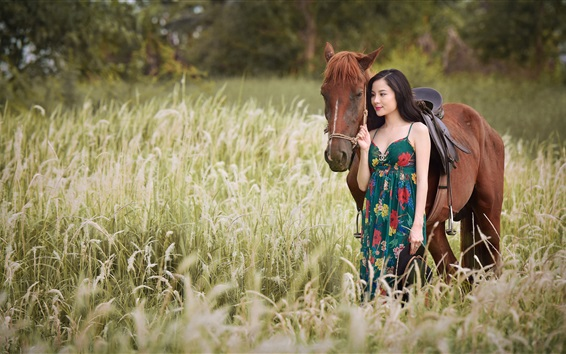 Wallpaper Asian girl and horse in the grass