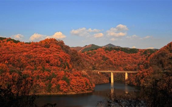 Wallpaper Autumn, bridge, river, trees, mountains, autumn