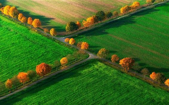 Fond d'écran Automne, Champs, vue haut, nord, rhin, Westphalie, Nottuln, Allemagne